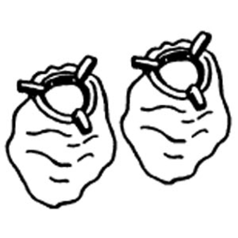 9901102 Gaslight Mantles, Soft, 1 Pair